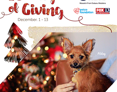 13 Days of Giving Fundraising Campaign for Non-Profit