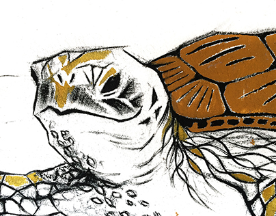 Turtle on Pandan