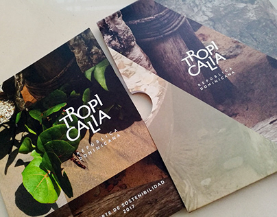 Corporate Brochure Design Tropicalia Report