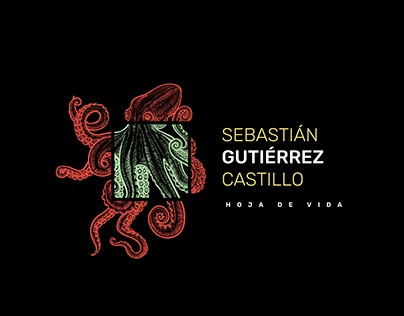 CV Sebastián Gutiérrez Castillo