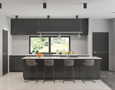 Black and white / kitchen / modular house