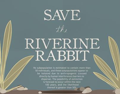 Info graph - Riverine Rabbit