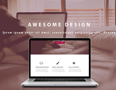 web design ( PSD download available )