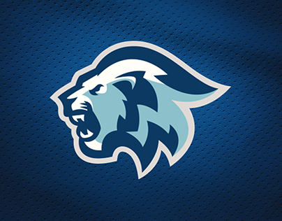 Blue Lions// Sports Identity FOR SALE.