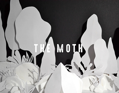 Stop-Motion Animation: The Moth (2019)