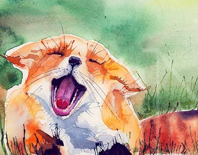 Ori, the house fox