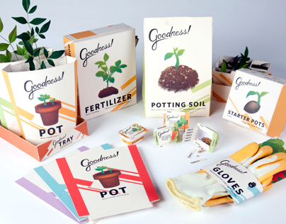 Package Design and 3-D - Student Work