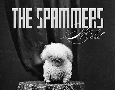 The Spammers Covers
