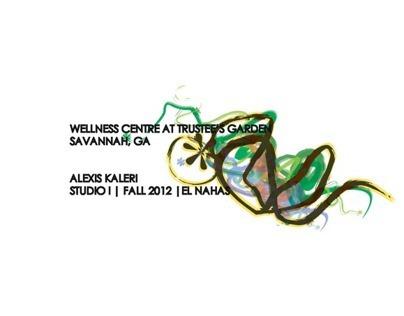 Studio I | Alternative Wellness Centre | Fall 2012