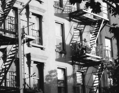 New York 2012 argentic