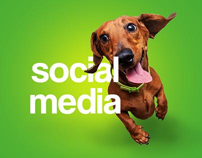 DOGPARK SOCIAL MEDIA