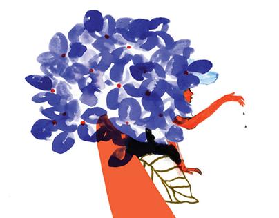 Illustrated Wine label / Terracanta