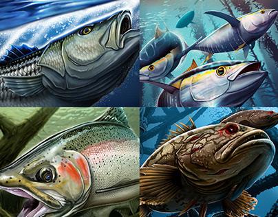 2015 Fishing Illustrations