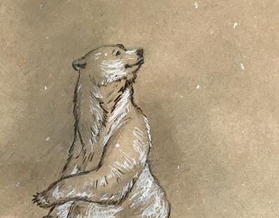 A bear enjoying snowflakes