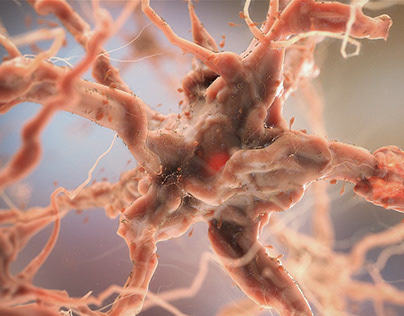 The process of neurons when exposed to THC.