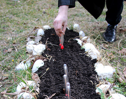 """Project (Collective): """"COMPOST ME"""" 2020."""