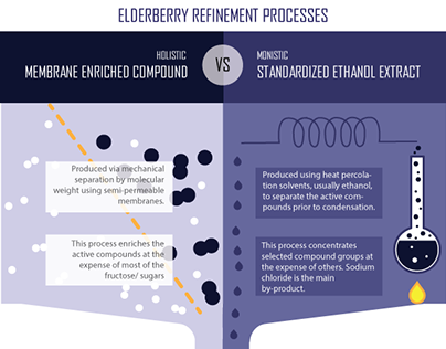Elderberry Filtration Infographic