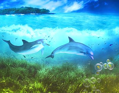 Dolphins-Manipulation