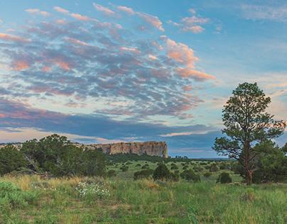 Green New Mexico