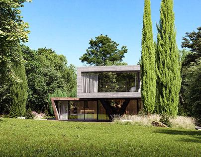 Villa NEO House