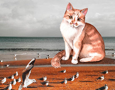 Winter cats illustrations