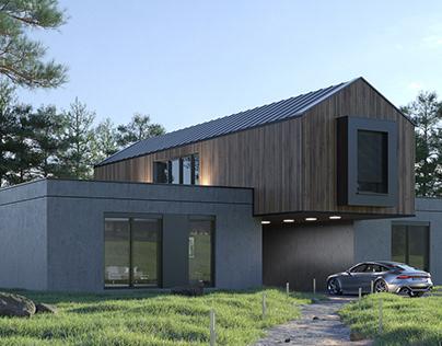 Exterior 01 - Modern house