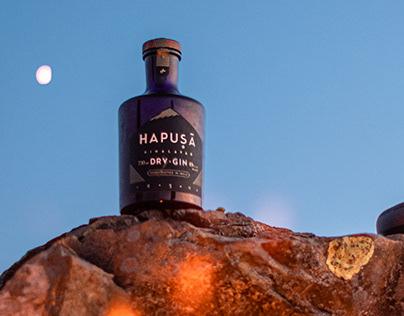 Hapusa Gin - Videos