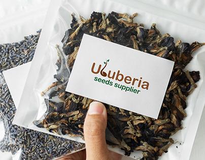 Uluberia Seeds | Logo Design