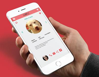 BuscaPet - App de adoção