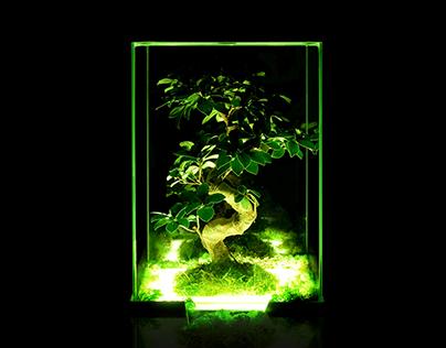 Neon modern interior garden