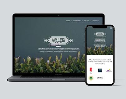 Waleta - Web Design and Development