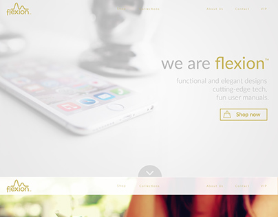 Homepage design for Flexion phone accessories