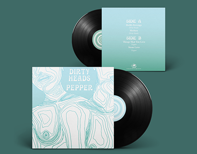 Vinyl Record Split