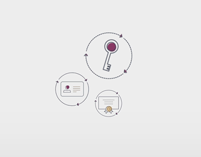 Animated Infographic, After Effects on Behance