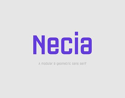 Necia Font Family
