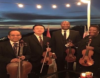 Ocdamia Strings - Wedding Ceremony Musicians