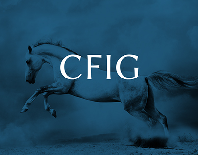 CFIG SE - Financial Services