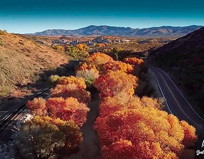 Autumn in Arizona