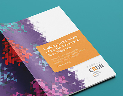 UK Strategy on Rare Diseases 2020: CRDN Policy Report