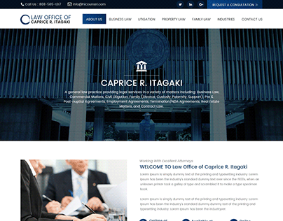 Business Law Website Design