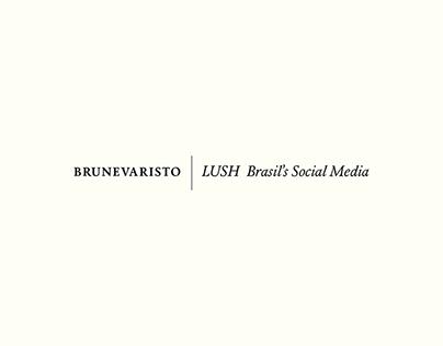 LUSH Brasil's Social Media - 2016