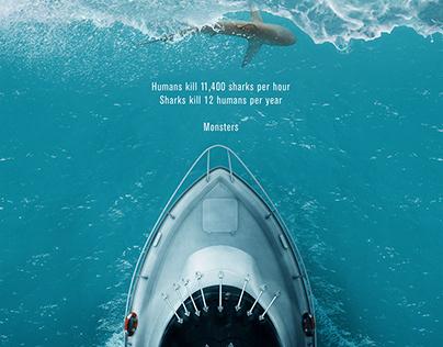 Shark Culling Laws