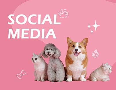 Social Media - Pet Grooming