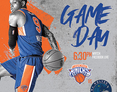 Westchester Knicks Campaign