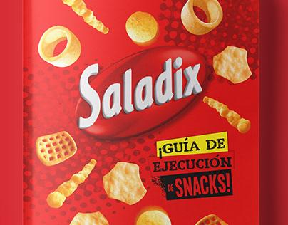 Guía Ejecución Saladix