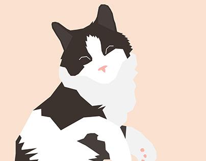 Series of cat illustrations