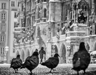 Munich,an Unusual Winter II