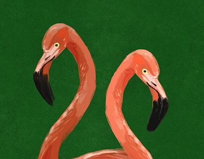 Flamingos by Christina Gliha