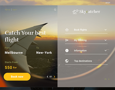 Airlines website design