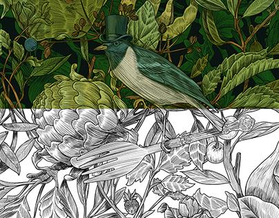 Botanique illustration